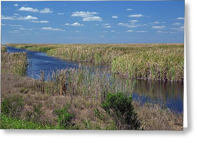 Stormwater Treatment Area Greeting Card by Jim West