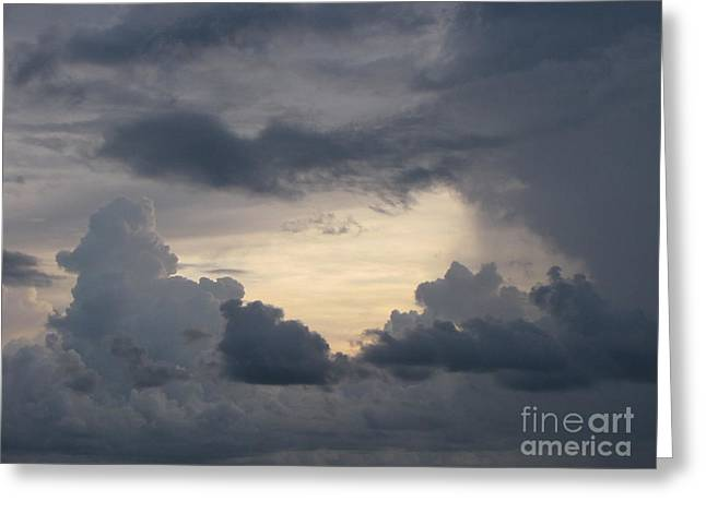 Stormy Evening Greeting Card by Gayle Melges