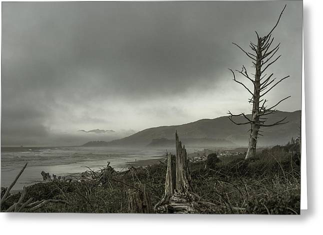 Stormy Oregon Coast Greeting Card by Shawn St Peter