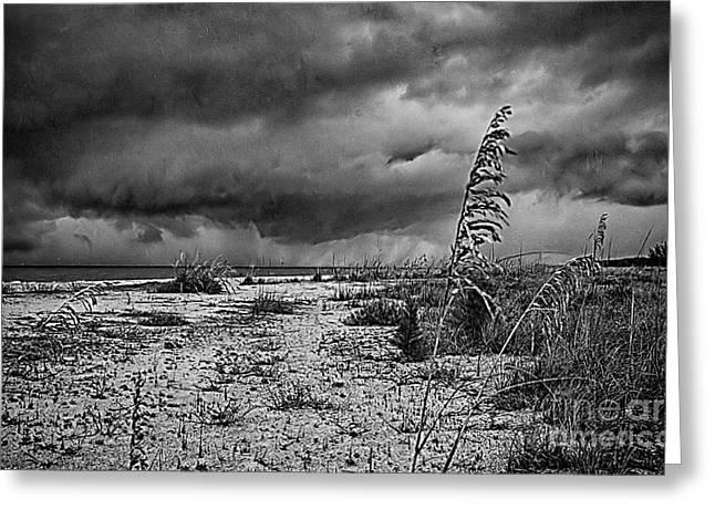 Stormy Seas Greeting Card by Anne Rodkin