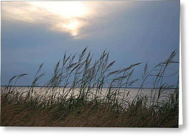 Stormy Sunset Prince Edward Island II Greeting Card by Micheline Heroux