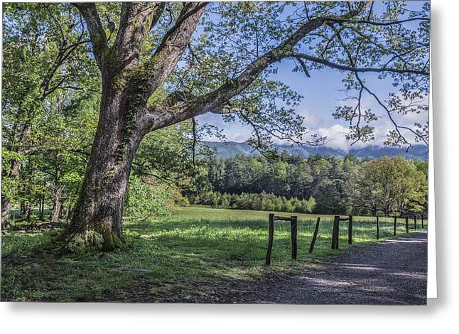 Story In The Smokies Greeting Card by Jon Glaser
