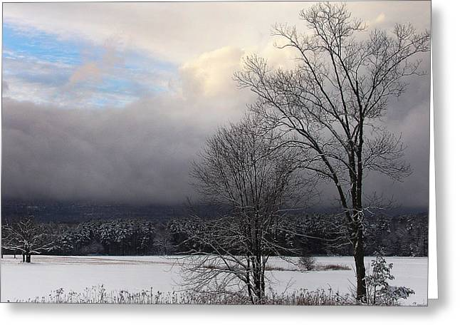 Story's Field With Passing Clouds Of Winter Greeting Card by Terrance DePietro
