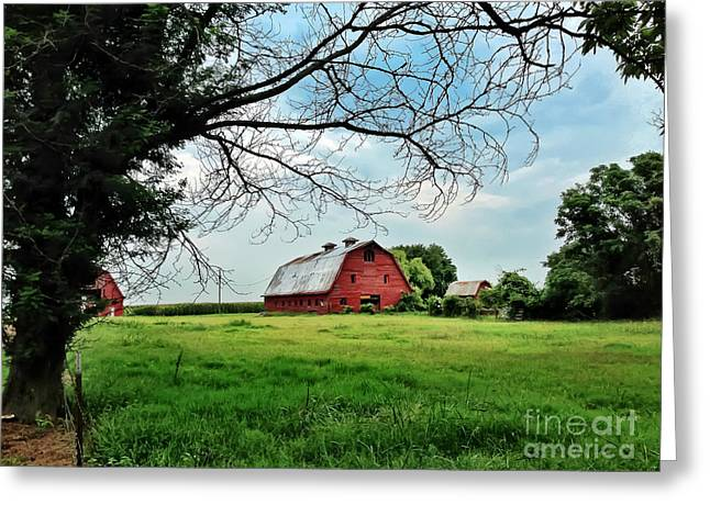 Stovall Farms In The Mississippi Delta Greeting Card
