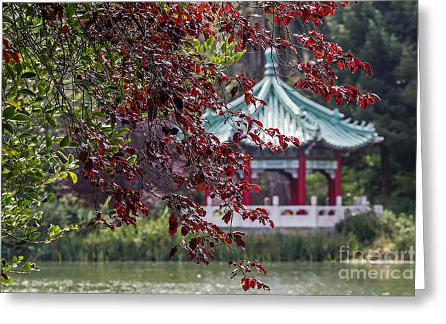 Stow Lake Pavilion Greeting Card