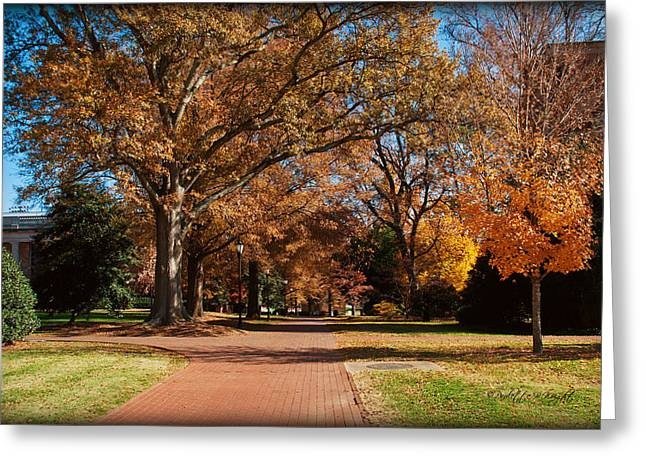 Straight Ahead To Richardson Stadium - Davidson College Greeting Card by Paulette B Wright