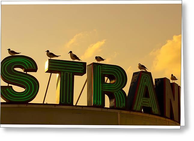 Strand Greeting Card by Tom Gari Gallery-Three-Photography