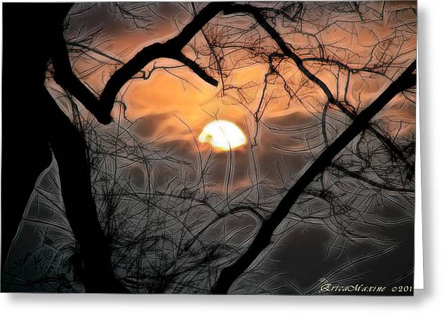 Greeting Card featuring the photograph Strange Morning by EricaMaxine  Price