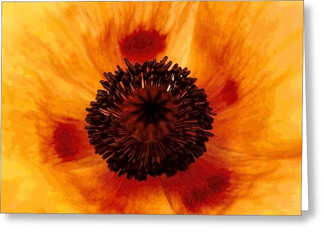 Straw Poppy Greeting Card