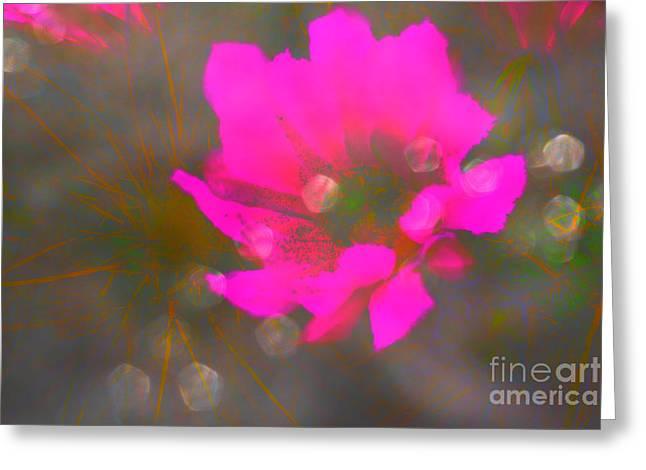 Strawberry Hedgehog Desert Rain Greeting Card by Beverly Guilliams