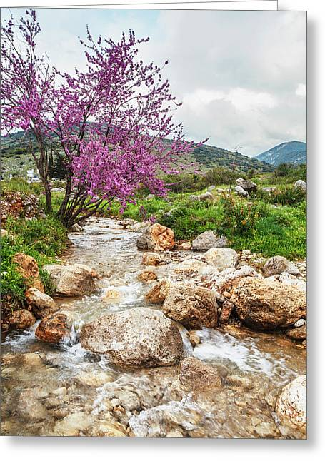 Stream Coming Off Mount Herman Greeting Card