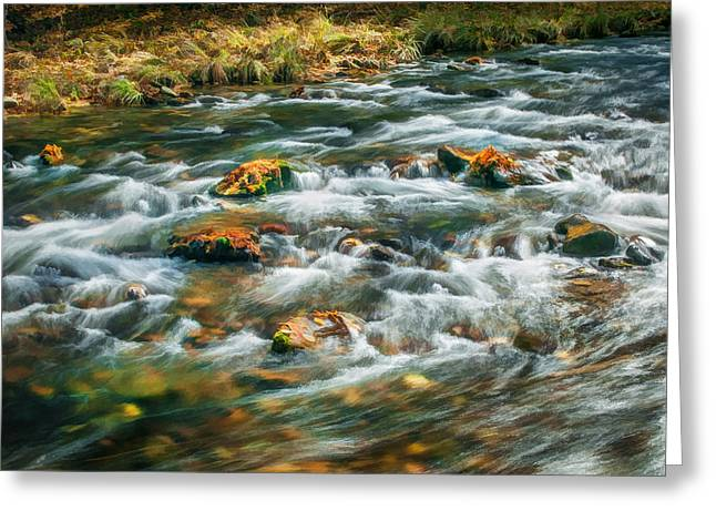 Stream Fall Colors Great Smoky Mountains Painted  Greeting Card by Rich Franco