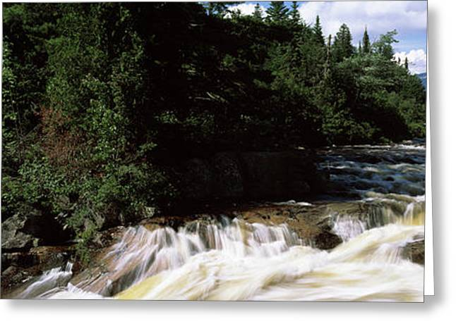 Stream Flowing Through A Forest, Little Greeting Card by Panoramic Images
