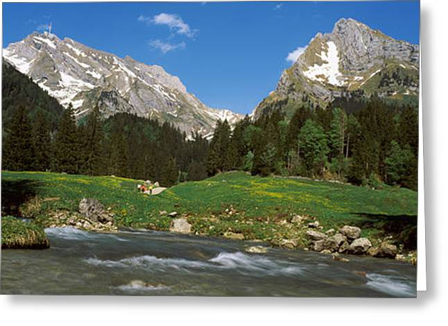 Stream Flowing Through A Forest, Mt Greeting Card