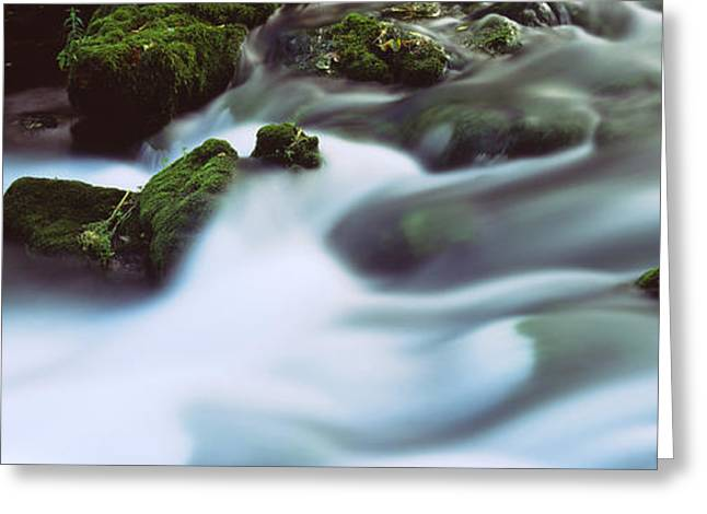 Stream Flowing Through Rocks, Alley Greeting Card