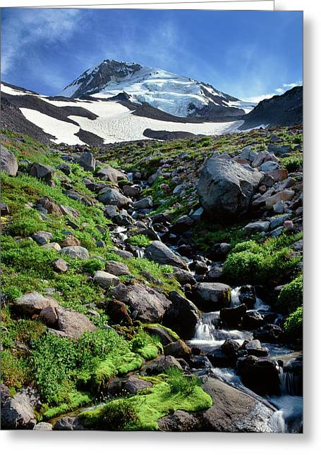 Stream Flowing Through Rocks, Mt Hood Greeting Card