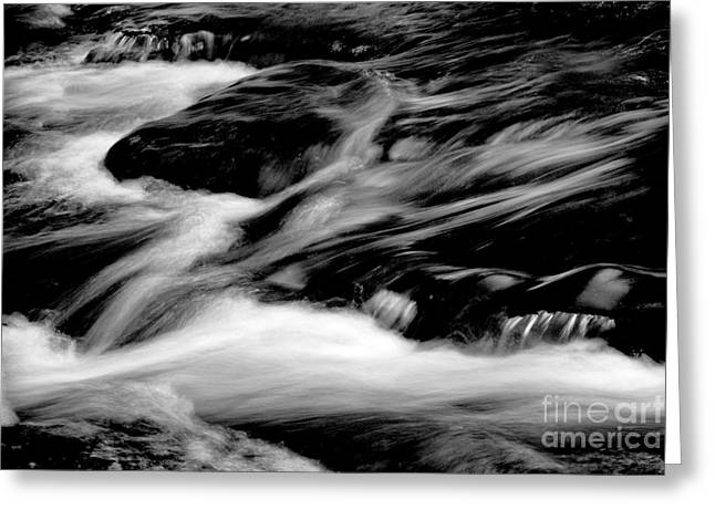 Stream In Bw Greeting Card by Paul W Faust -  Impressions of Light