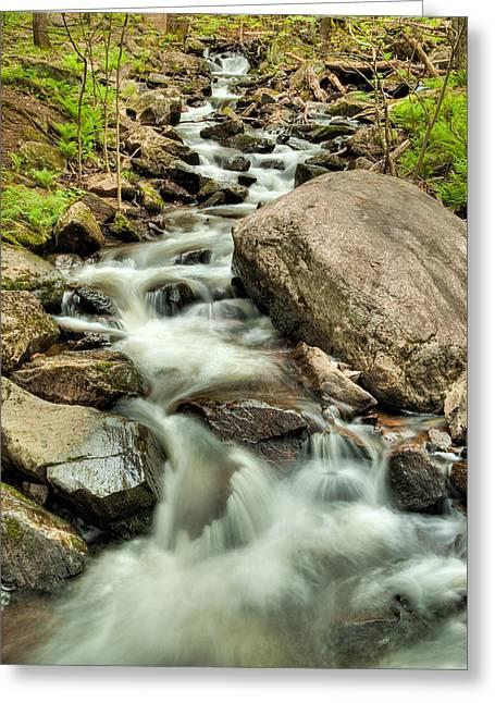 Stream In Gatineau Park Greeting Card by Rob Huntley