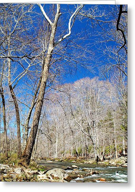 Greeting Card featuring the photograph Stream In Spring Montgomery County Pennsylvania by A Gurmankin
