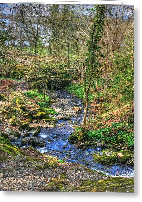 Greeting Card featuring the photograph Stream In Wales by Doc Braham