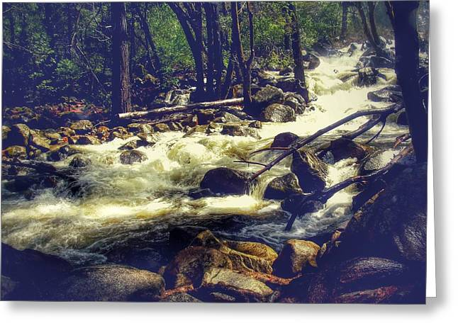 Stream Of Consciousness- Yosemite Greeting Card by Laura Mazzuca