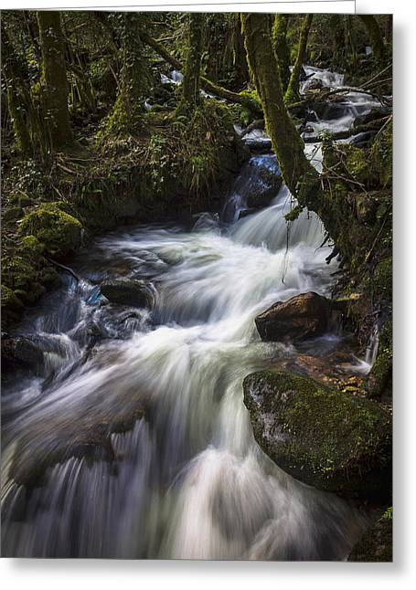 Greeting Card featuring the photograph Stream On Eume River Galicia Spain by Pablo Avanzini