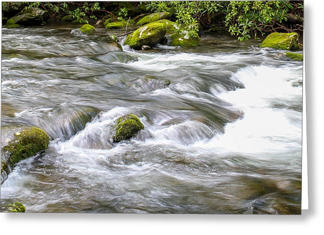Greeting Card featuring the photograph Stream  by Trace Kittrell