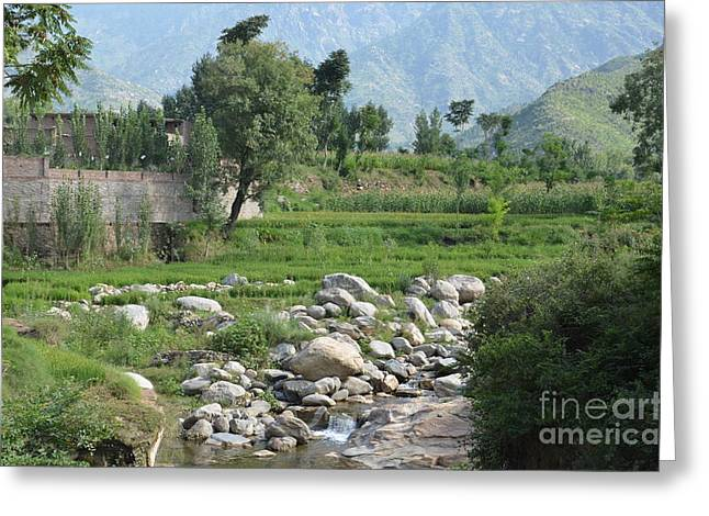 Stream Trees House And Mountains Swat Valley Pakistan Greeting Card