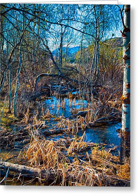 Streaming Beauty Greeting Card by Omaste Witkowski