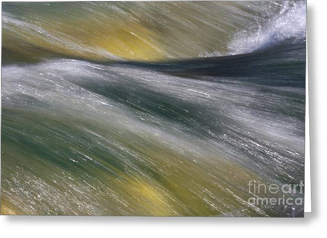 Streaming Water Green And Yellow Greeting Card by Heiko Koehrer-Wagner