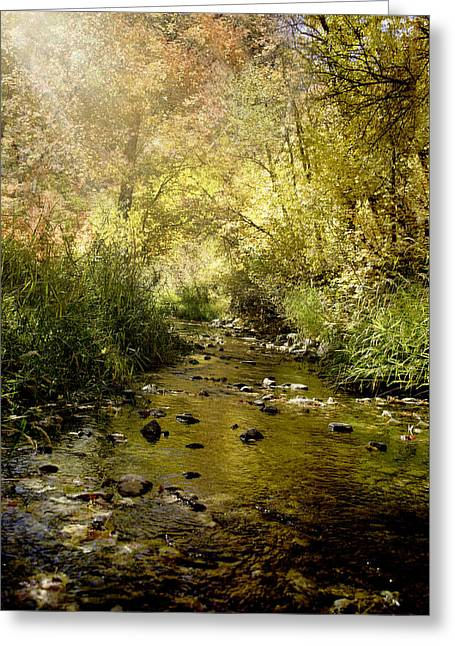 Streams Of Light II Greeting Card