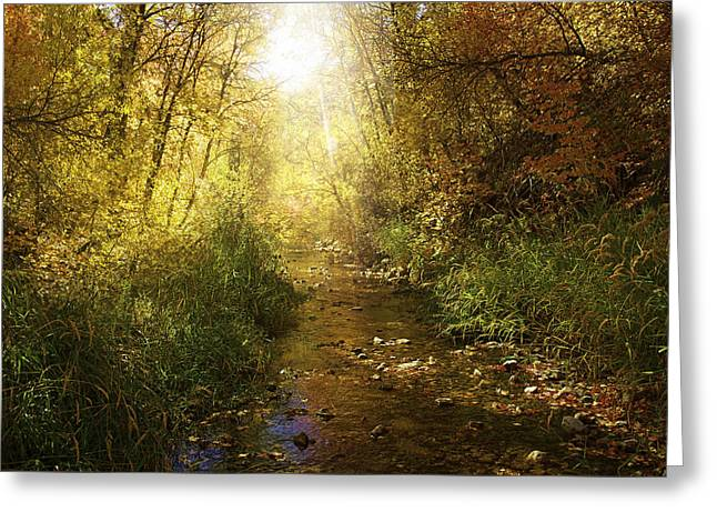Streams Of Light Greeting Card