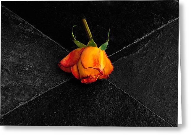 Greeting Card featuring the photograph Street Rose by Marwan Khoury