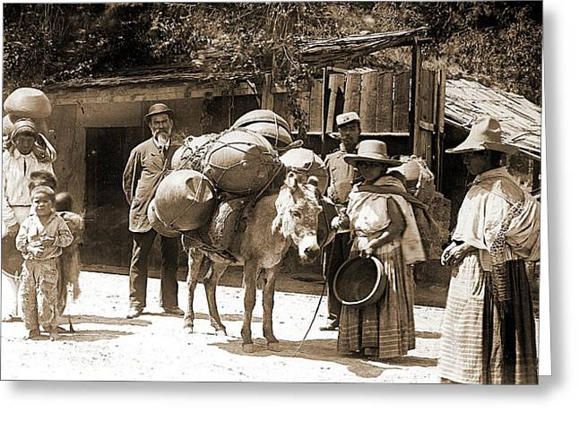 Street Scene, City Of Mexico, Jackson, William Henry Greeting Card by Litz Collection