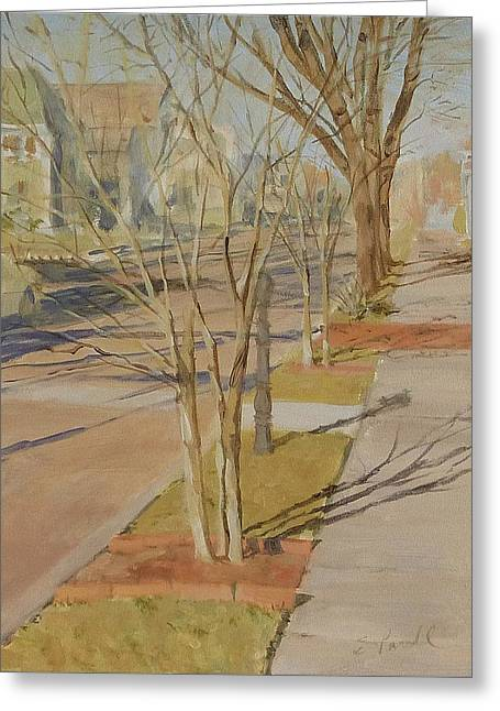 Street Trees With Winter Shadows Greeting Card