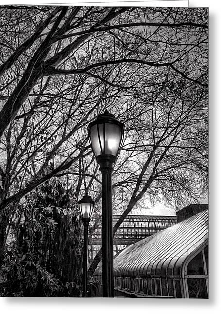 Streetlamp Brooklyn Greeting Card by H James Hoff