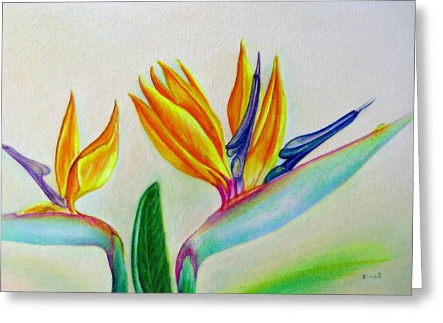 Strelitzia - Together Greeting Card by Zina Stromberg