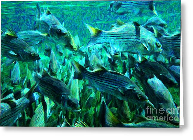 Striped Bass - Painterly V1 Greeting Card