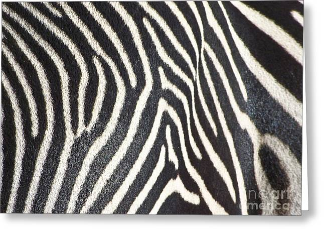 Stripes And Ripples Greeting Card by Kathy McClure