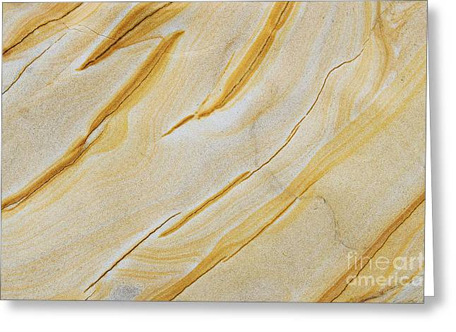 Stripes In Stone Greeting Card by Tim Gainey