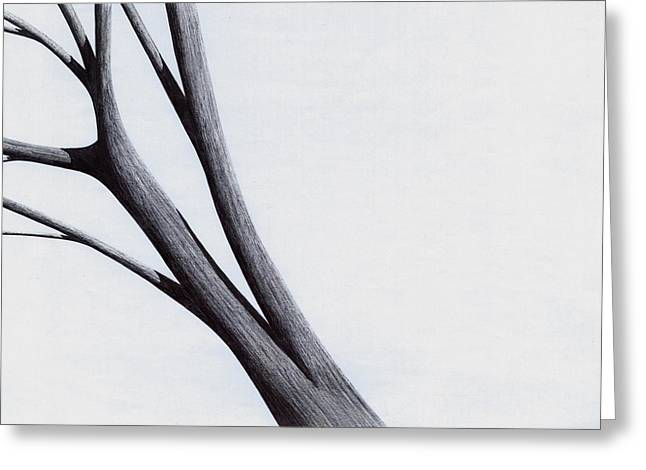 Strong Branches Between Light Greeting Card by Giuseppe Epifani
