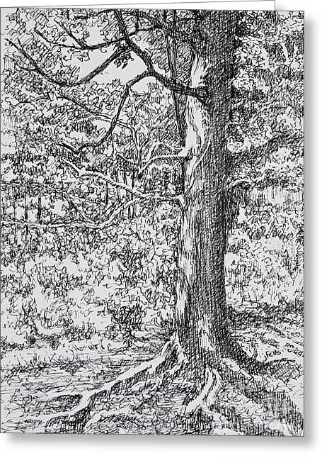 Strong Roots Greeting Card by Janet Felts