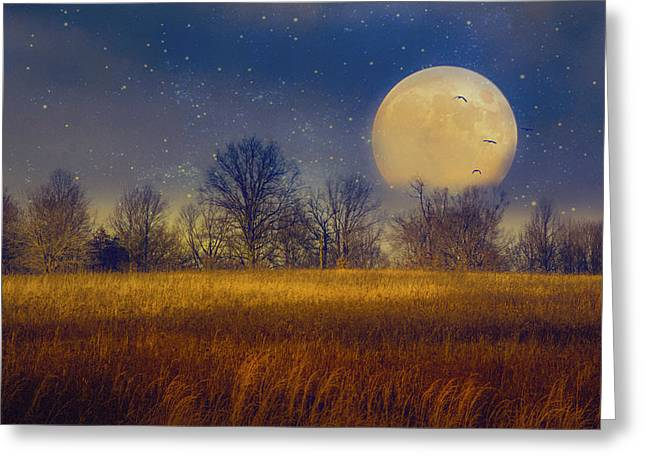 Struck By The Moon Greeting Card