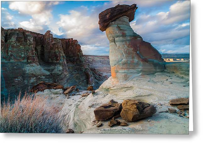 Stud Horse Point 2 Greeting Card by Larry Marshall