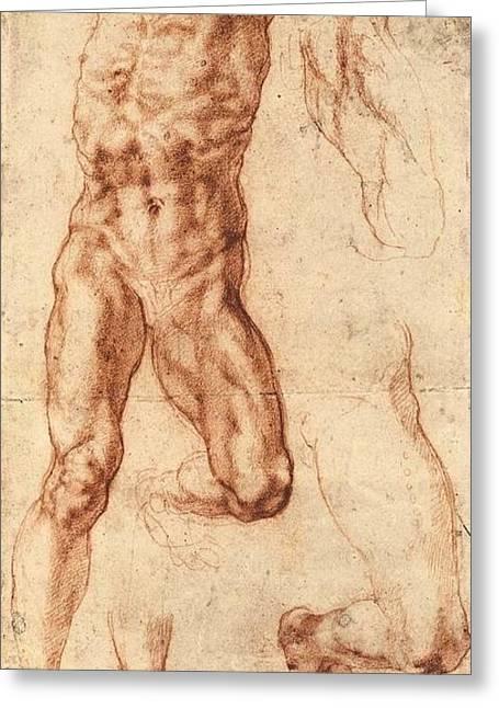 Studies For Haman Greeting Card by Michelangelo Buonarroti
