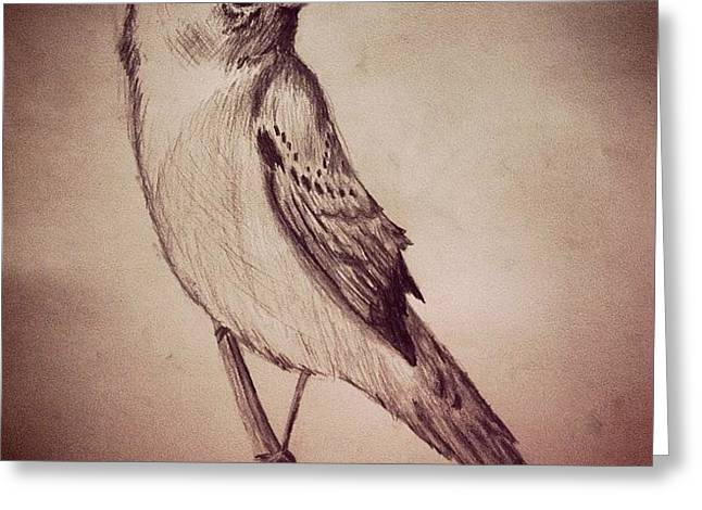 Study Of A Bird Greeting Card by Jessica Sanders