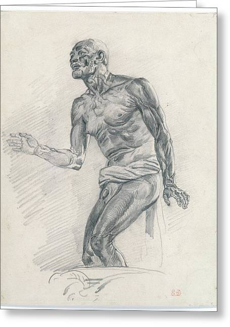 Study Of A Male Nude Study Greeting Card