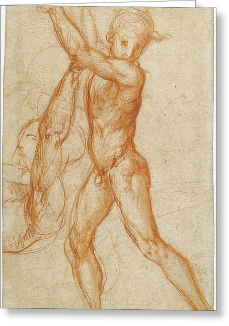 Study Of A Nude Boy, Partial Figure Study Recto Greeting Card by Litz Collection