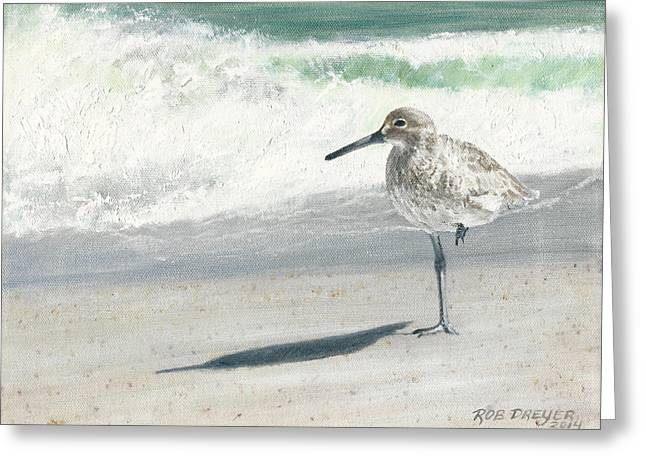Study Of A Sandpiper Greeting Card by Rob Dreyer