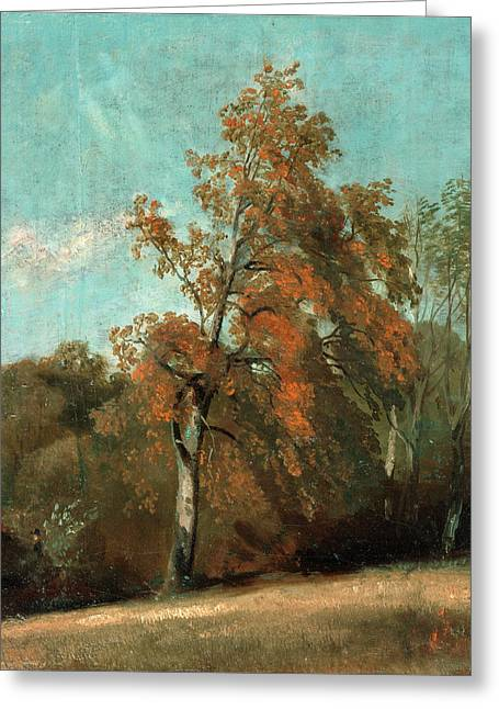 Study Of An Ash Tree, John Constable, 1776-1837 Greeting Card by Litz Collection